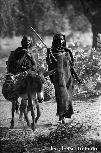 femmesaneafrique